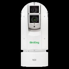 BirdDog Eyes A300 IP67 Extreme Weatherproof Full NDI PTZ Camera w/Sony Sensor & SDI (White)